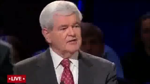 Gingrich: Media Blaming Business Community for Financial Crisis Should Go After Politicians That Caused it First