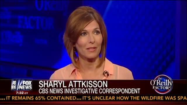 Sharyl Attkisson: 'I Think I Know' Who Hacked Into My Computer