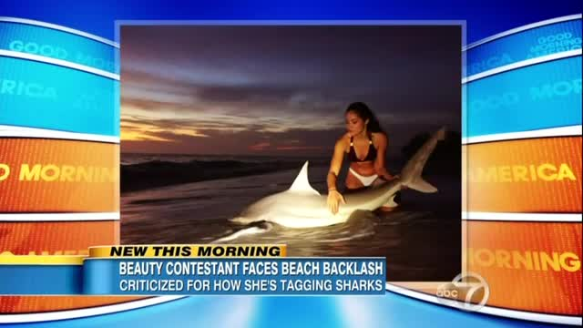 ABC Acts As if Threat Posed to Sharks by Bikini-Clad Girl is Twice as Important as Planned Parenthood Scandal