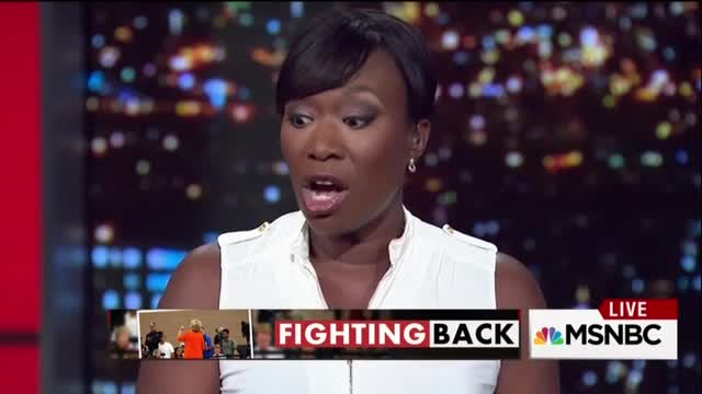 """MSNBC's Reid: Maybe Hillary's E-Mails """"More Secure"""" than Government E-Mails"""