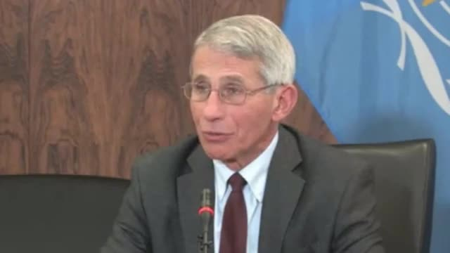 Fauci: Zika Spreading Mosquito 'Very Difficult Mosquito to Control and Eliminate'