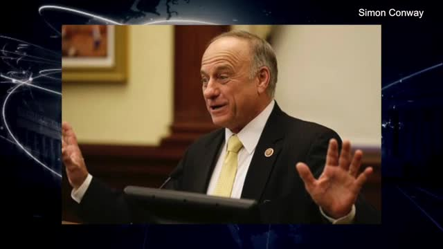Rep. King on Immigration: Dems Want 'Undocumented Democrats In' 'So They Can Vote' Democrat