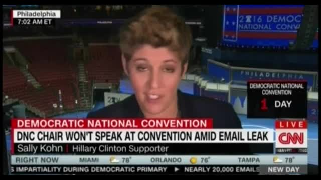 Sally Kohn Claims Russian Hackers Leaked DNC Docs to Aid Trump