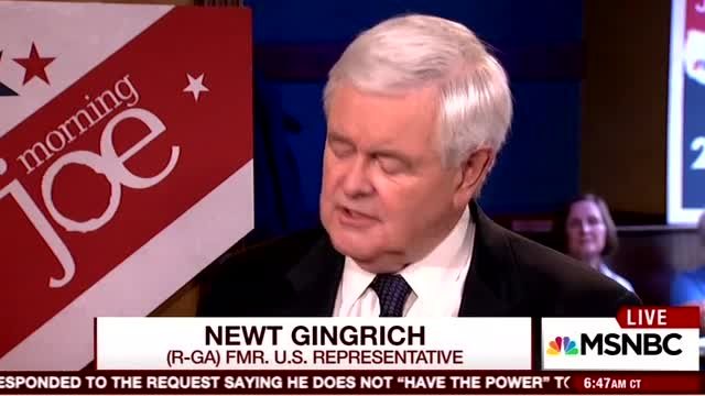 Gingrich: Race Relations Worse After Obama's Attacks on Police