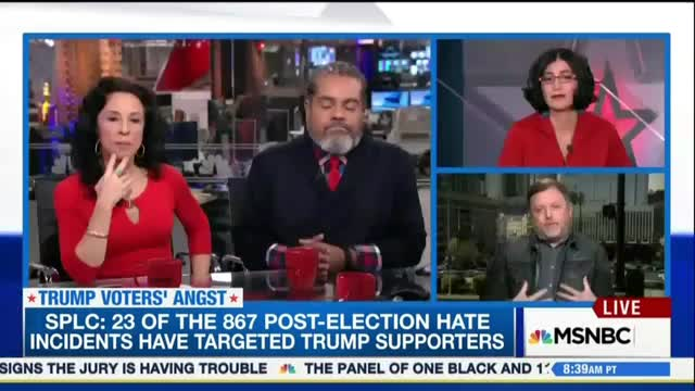 MSNBC Sees MSM Turning Whites Vs Immigrants; Frets 'Silent Collaborators' w Racism