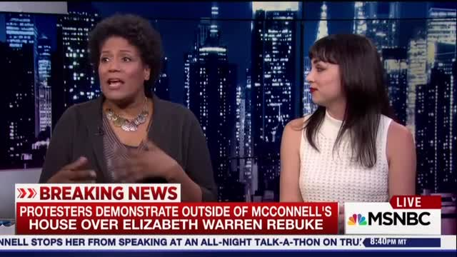 MSNBC Guests: Sen. McConnell Was 'Drunk' and Playing Bigot 'Bingo'