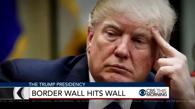Nets Revel in Trump 'Backing Down' on Border Wall