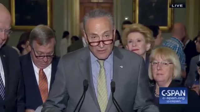 Schumer: Money for Border Wall Could Be Used to 'Give Just About Every American Broadband'