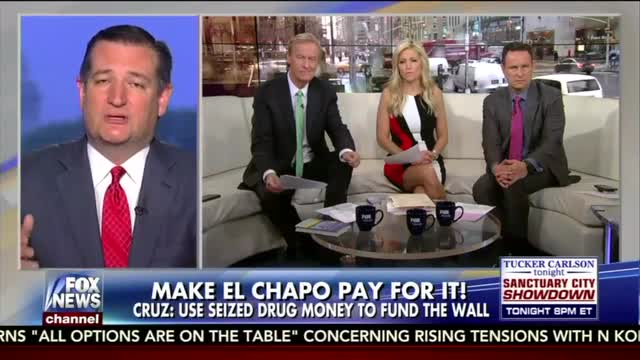 Cruz: Fund The Border Wall With Assets From Drug Cartels